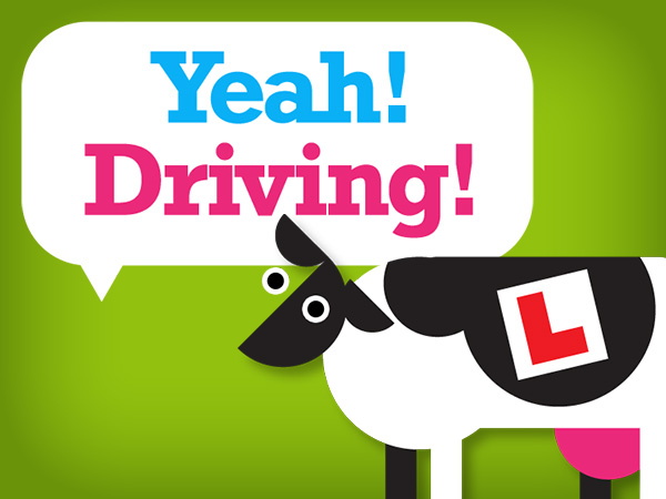 Driving lessons brand and website design.